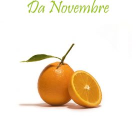 Arance Navel da Novemrbre