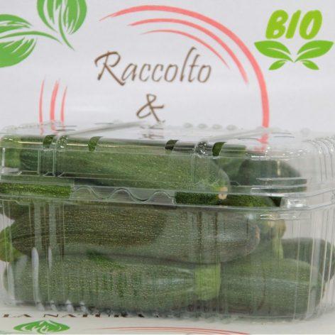 Confezione Zucchine Verdi Bio