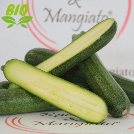 Zucchine Verdi Bio