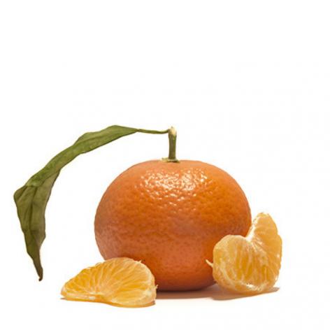 Clementine Nova di Sicilia