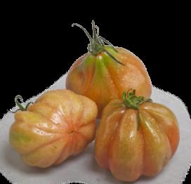 Pomodoro cuore di bue siciliano