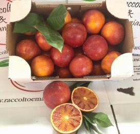 Arance Tarocco rosso da 3 kg