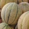 Confezione Meloni